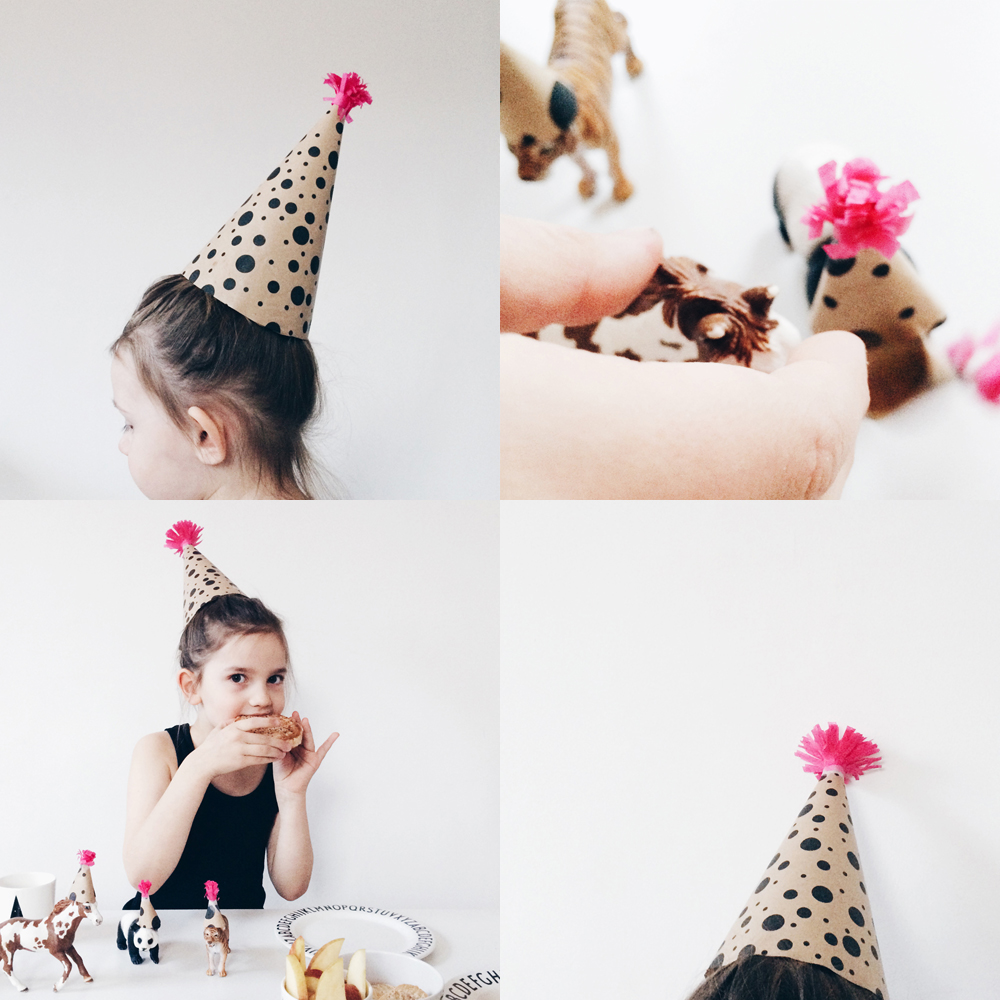 dad_home_party_hats_animals