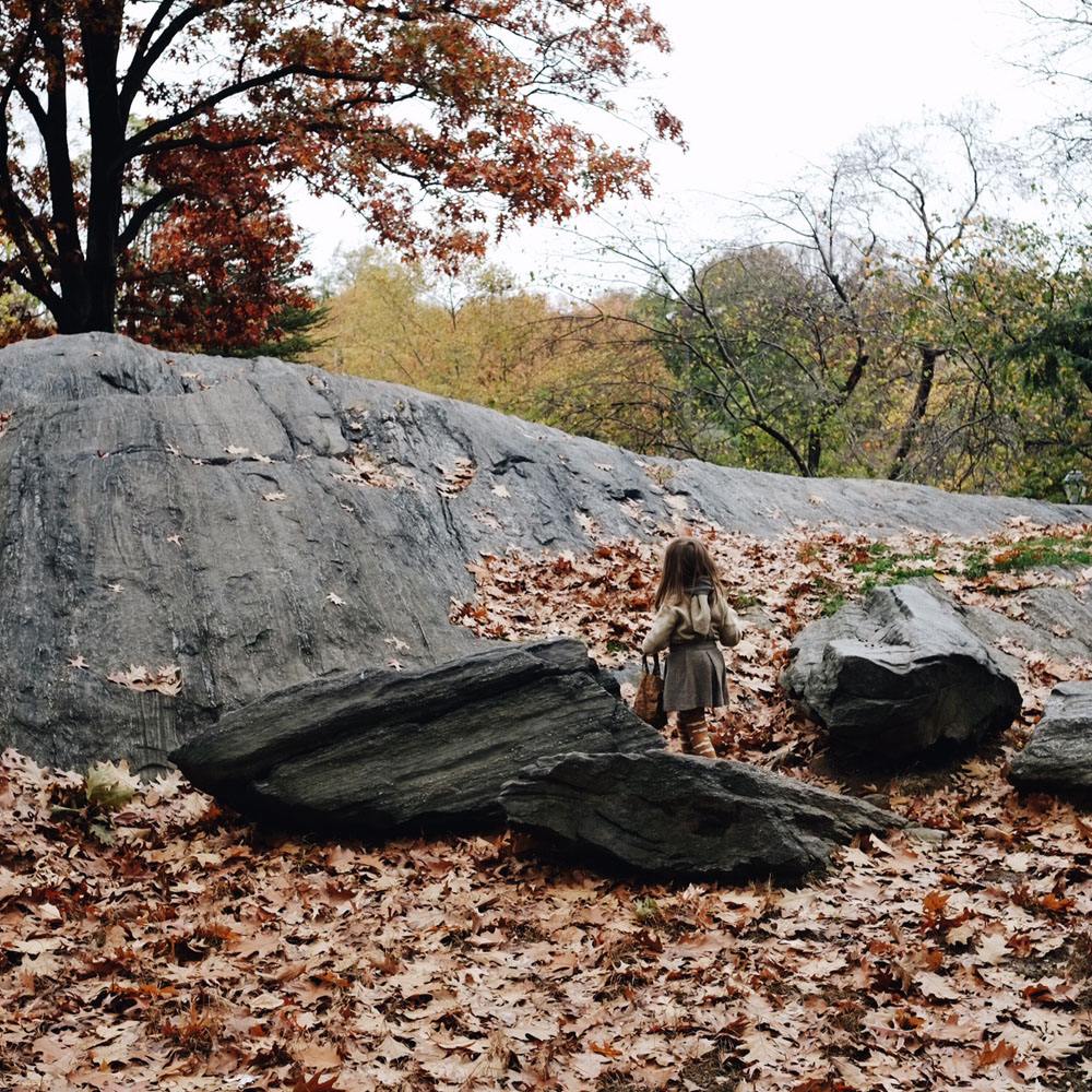 Central_park_autumn_leaves_little_kin_journal_5