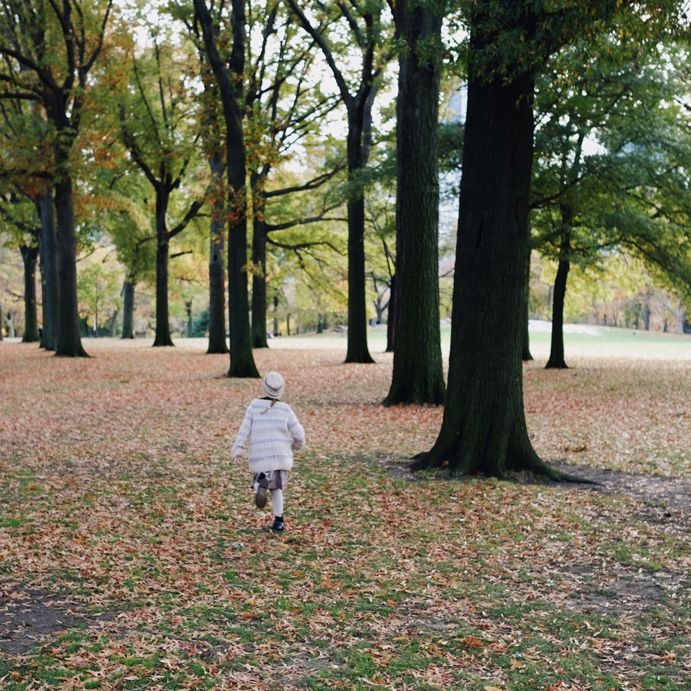 Central_park_autumn_leaves_little_kin_journal_9