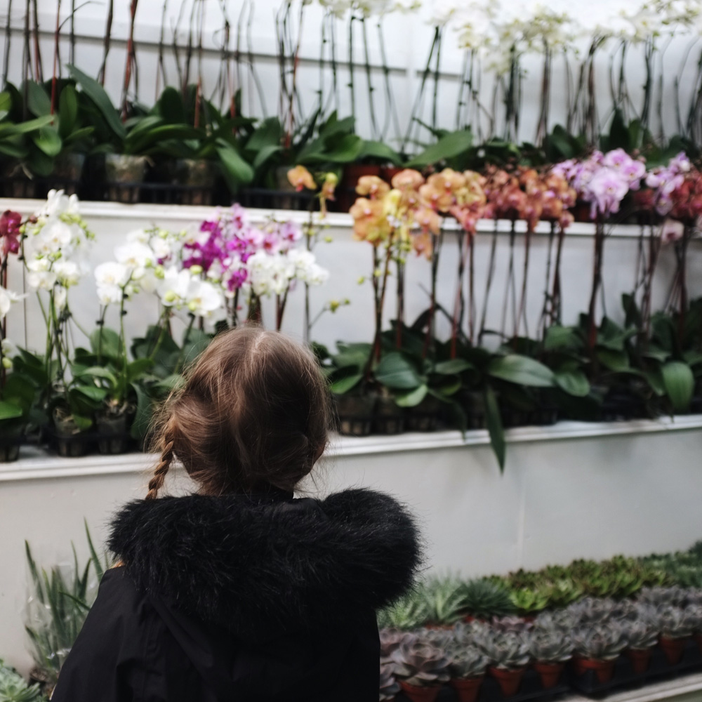 New_York_flower_market_visiting_with_kids_little_kin_journal_5