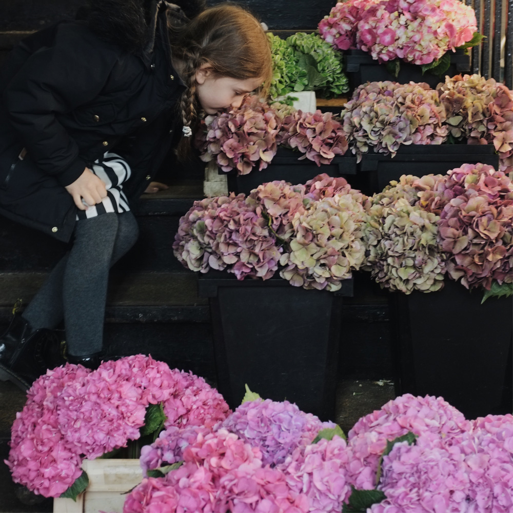 New_York_flower_market_visiting_with_kids_little_kin_journal_7